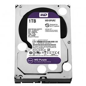 Western Digital Purple 1000GB